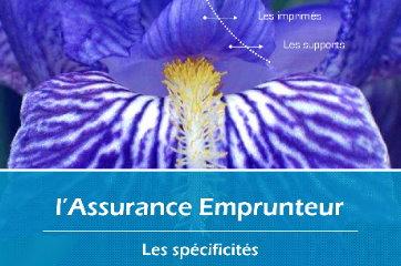 jmzdesign_reference_Brochure-commerciale-interne-secteur-bancaire_00